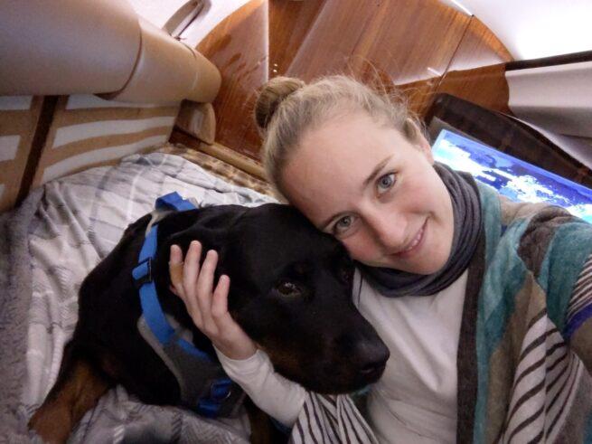 pet travel in costa rica